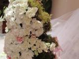 florallink-presonal-events-04